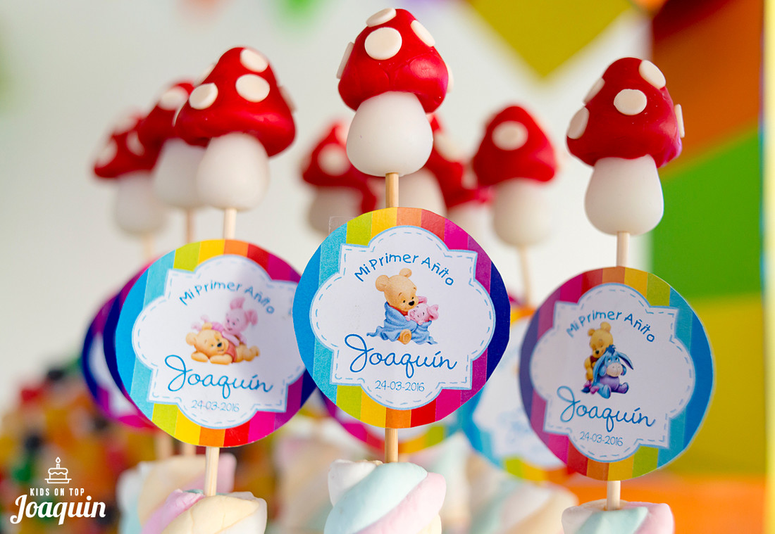 fotografo-de-cumpleaños-cordoba-fotografia-infantil-niños-niñas-fotos-fiesta-1año-002